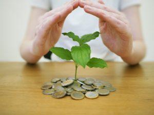 symbol frugalismus kleiner baum wächst aus haufen münzgeld